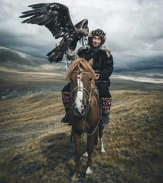 Kazakh sur son cheval avec un aigle